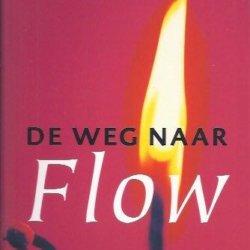 De weg naar Flow